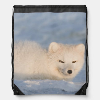 USA, Alaska, 1002 Coastal Plain of the ANWR. An Drawstring Bag