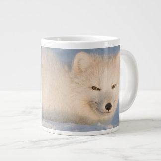 USA, Alaska, 1002 Coastal Plain of the ANWR. An Large Coffee Mug