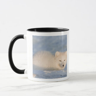 USA, Alaska, 1002 Coastal Plain of the ANWR. An Mug