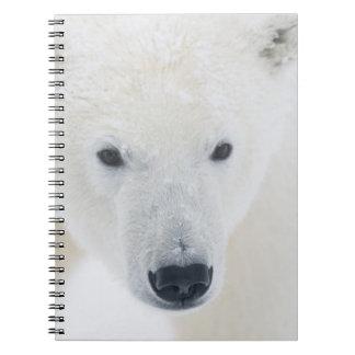 USA, Alaska, 1002 Coastal Plain of the Arctic 3 Notebook