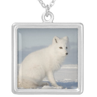 USA, Alaska, 1002 Coastal Plain of the Arctic 4 Silver Plated Necklace