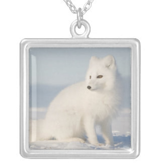 USA, Alaska, 1002 Coastal Plain of the Arctic 5 Silver Plated Necklace