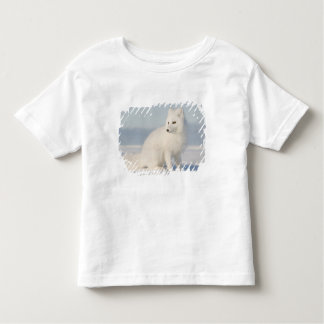 USA, Alaska, 1002 Coastal Plain of the Arctic 5 Toddler T-Shirt