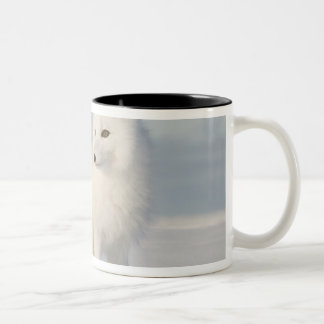 USA, Alaska, 1002 Coastal Plain of the Arctic 5 Two-Tone Coffee Mug