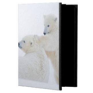 USA, Alaska, 1002 Coastal Plain of the Arctic iPad Air Cover