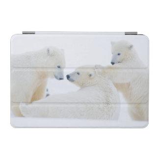 USA, Alaska, 1002 Coastal Plain of the Arctic iPad Mini Cover