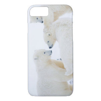 USA, Alaska, 1002 Coastal Plain of the Arctic iPhone 8/7 Case
