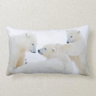 USA, Alaska, 1002 Coastal Plain of the Arctic Lumbar Pillow
