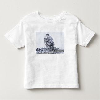 USA, Alaska, 1002 Coastal Plain of the Arctic Toddler T-Shirt