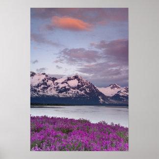 USA, Alaska, Alsek River Valley. View of Alsek Poster