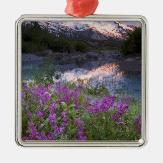 USA, Alaska, Alsek-Tatshenshini Wilderness. Christmas Ornament