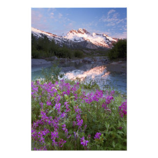 USA, Alaska, Alsek-Tatshenshini Wilderness. Photo Print