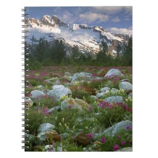 USA, Alaska, Alsek-Tatshenshini Wilderness. View Notebooks
