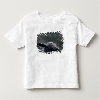 USA, Alaska, Angoon, Humpback Whale Megaptera 2 Toddler T-Shirt