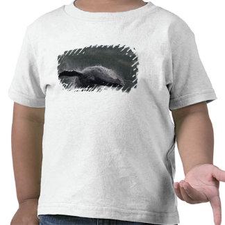 USA, Alaska, Angoon, Humpback Whale Megaptera 2 T Shirt