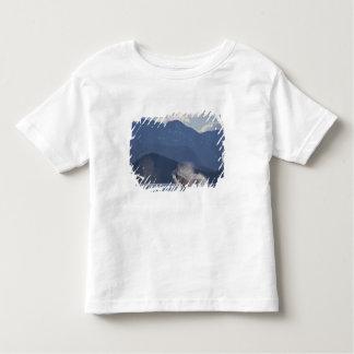USA, Alaska, Angoon, Humpback Whale Megaptera 3 Toddler T-Shirt