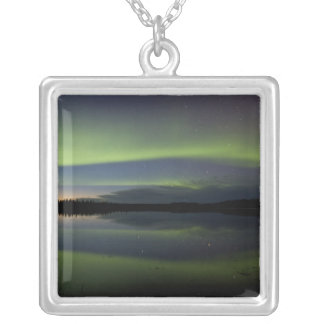 USA, Alaska, Arctic Circle, Bettles. The Silver Plated Necklace