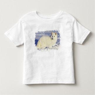 USA, Alaska. Arctic fox in winter coat. Credit Toddler T-Shirt