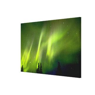 USA, Alaska, Chena Hot Springs. Aurora 3 Canvas Print