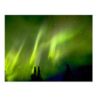 USA Alaska Chena Hot Springs Aurora 3 Postcard