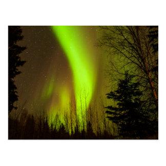 USA, Alaska, Chena Hot Springs. View Of Aurora Postcard