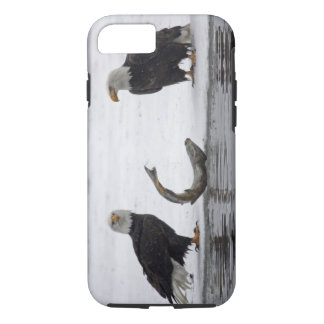 USA, Alaska, Chilkat Bald Eagle Preserve. Pair iPhone 8/7 Case