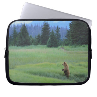 USA, Alaska, Clark Lake National Park. Grizzly Laptop Sleeve