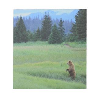 USA, Alaska, Clark Lake National Park. Grizzly Notepad