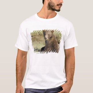 USA. Alaska. Coastal Brown Bear cub at Silver 3 T-Shirt