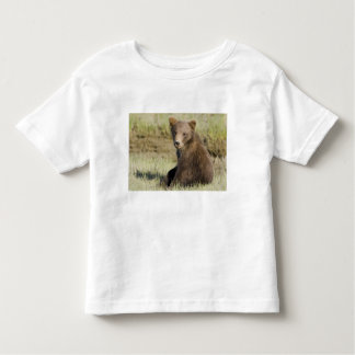 USA. Alaska. Coastal Brown Bear cub at Silver 3 Toddler T-Shirt