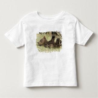 USA. Alaska. Coastal Brown Bear cub at Silver Tshirts