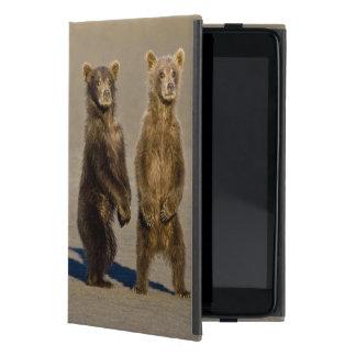 USA. Alaska. Coastal Brown Bear cubs watch their iPad Mini Cover