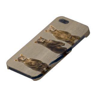 USA. Alaska. Coastal Brown Bear cubs watch their iPhone 5 Case