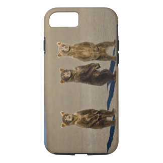 USA. Alaska. Coastal Brown Bear cubs watch their iPhone 8/7 Case
