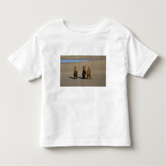 USA. Alaska. Coastal Brown Bear cubs watch their Toddler T-Shirt