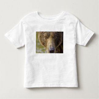 USA. Alaska. Concentration-A coastal brown bear Toddler T-Shirt