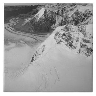 USA, Alaska, Denali National Park, Aerial view Tile