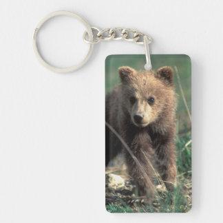USA, Alaska, Denali National Park, Grizzly Double-Sided Rectangular Acrylic Key Ring
