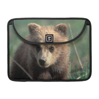USA, Alaska, Denali National Park, Grizzly Sleeve For MacBooks