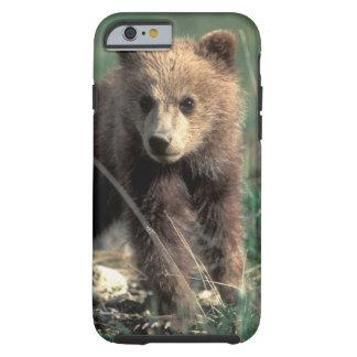 USA, Alaska, Denali National Park, Grizzly Tough iPhone 6 Case