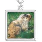 USA, Alaska, Denali National Park, Hoary 2 Silver Plated Necklace