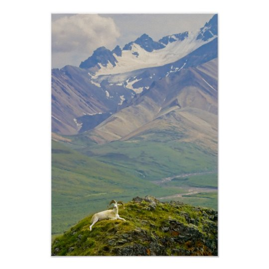 USA, Alaska, Denali National Park, Polychrome Poster