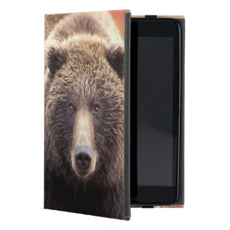 USA, Alaska, Denali NP, female Grizzly Bear Cover For iPad Mini