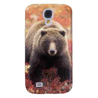 USA, Alaska, Denali NP, female Grizzly Bear Galaxy S4 Case