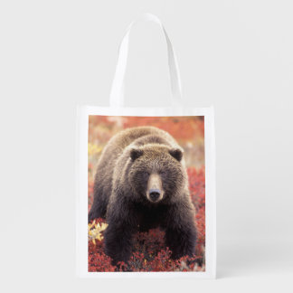 USA, Alaska, Denali NP, female Grizzly Bear Reusable Grocery Bag