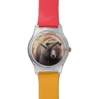 USA, Alaska, Denali NP, female Grizzly Bear Wrist Watch