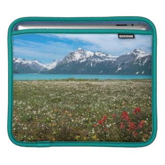 USA, Alaska, Glacier Bay National Park 2 iPad Sleeve
