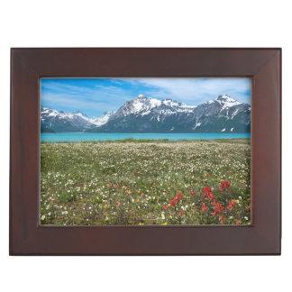 USA, Alaska, Glacier Bay National Park 2 Keepsake Box