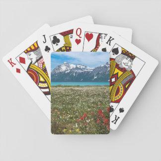 USA, Alaska, Glacier Bay National Park 2 Playing Cards