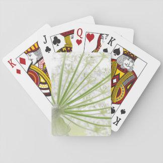 USA, Alaska, Glacier Bay National Park 3 Poker Deck